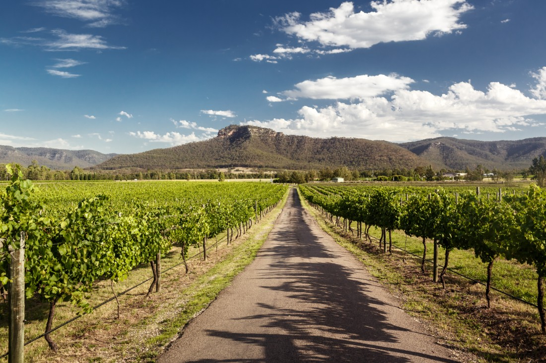48 Hours In Hunter Valley: A Vintner Project Guide