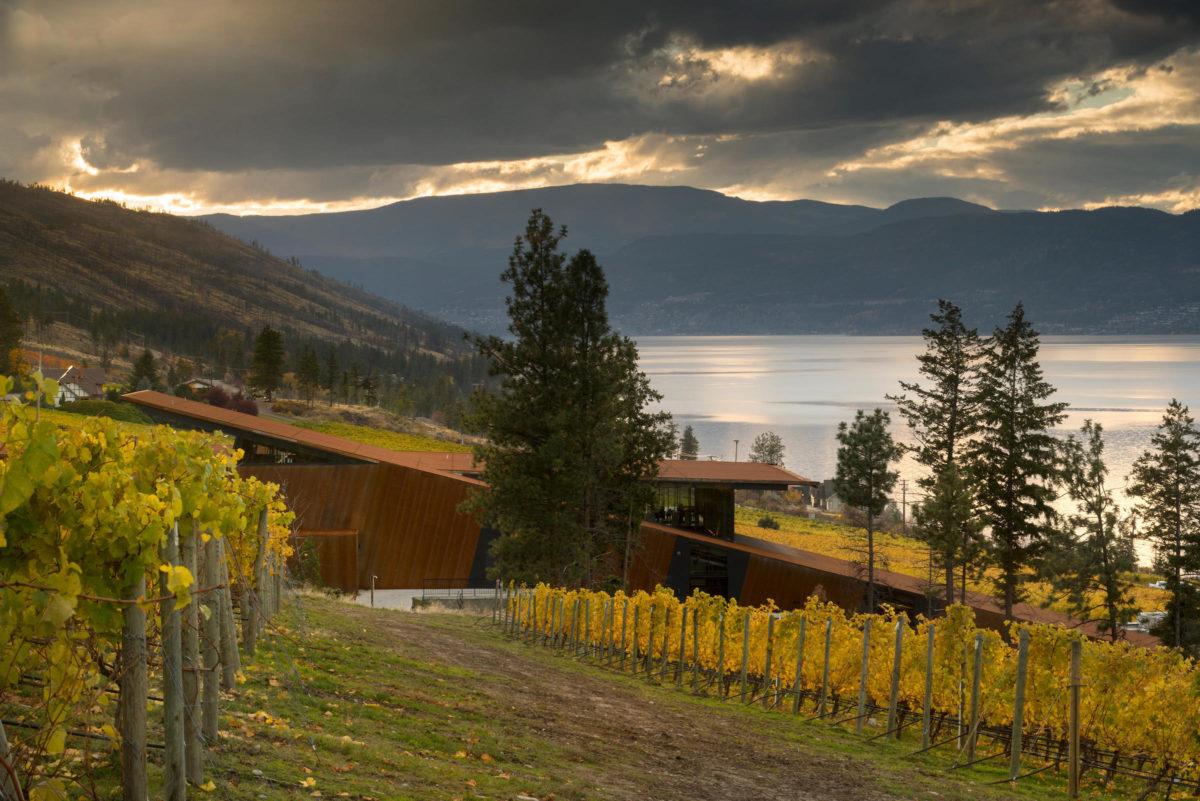 Martin's Lane Winery – Unique, Distinct, Exceptional